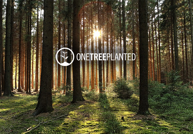 image from WebHosting.it e One Tree Planted