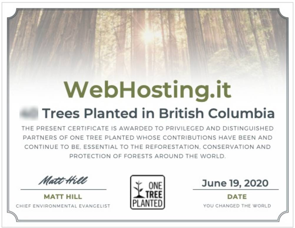 WebHosting.it e One Tree Planted GIUGNO 2020