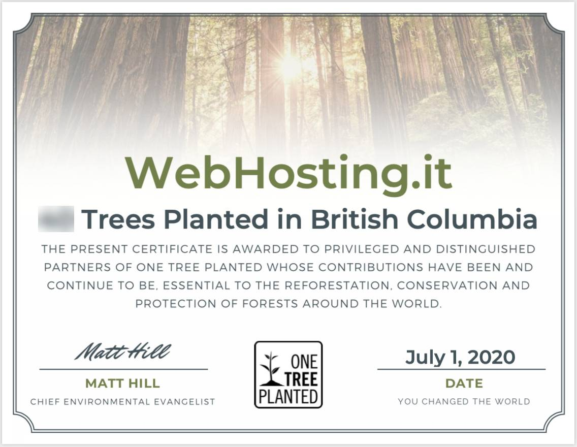 WebHosting.it e One Tree Planted LUGLIO 2020