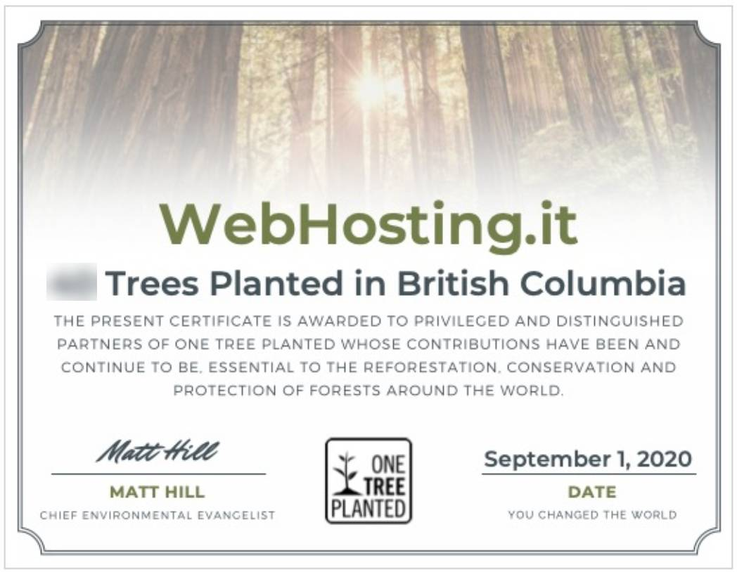 WebHosting.it e One Tree Planted SETTEMBRE 2020
