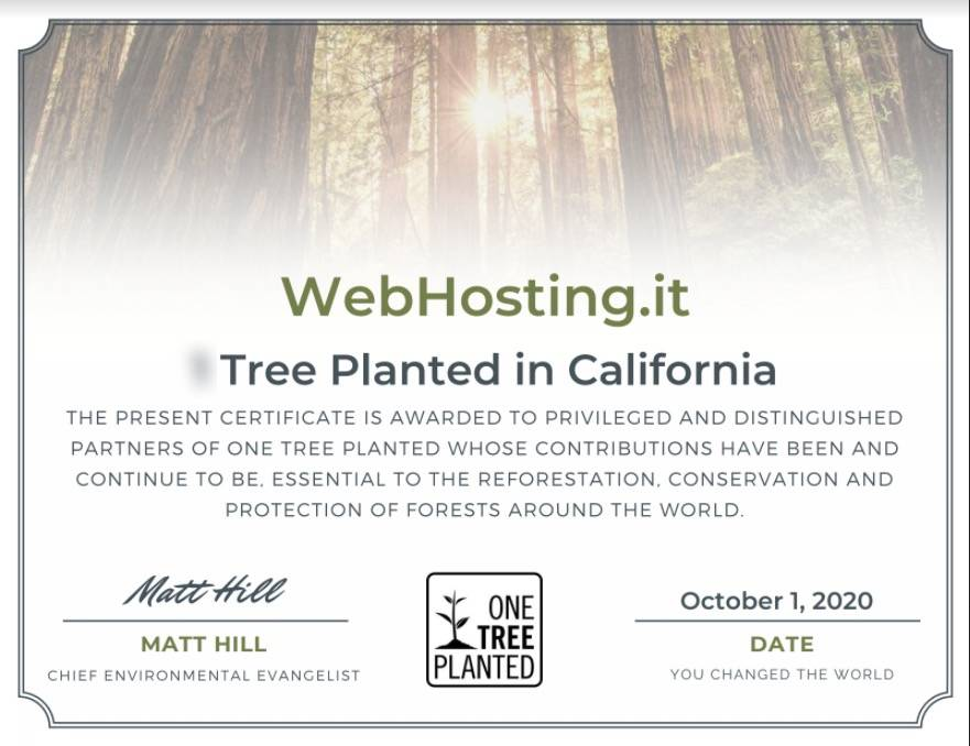 WebHosting.it e One Tree Planted OTTOBRE 2020