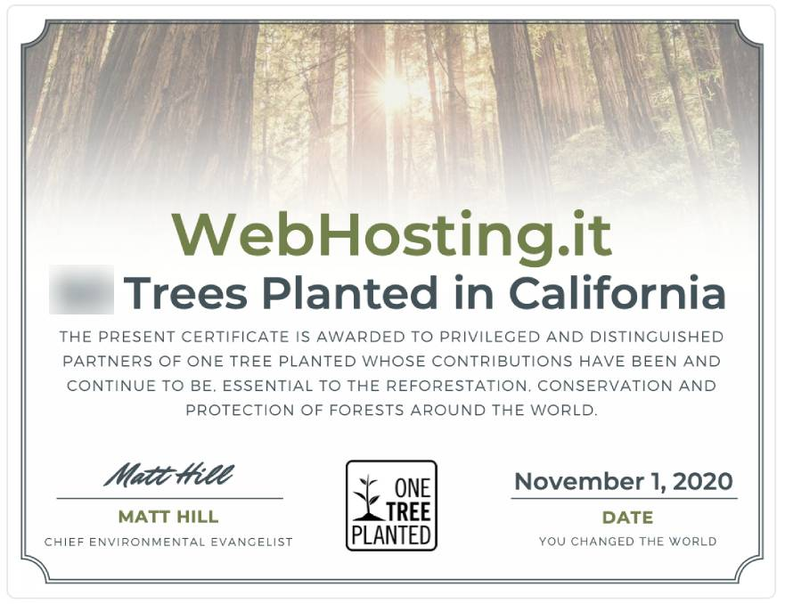 WebHosting.it e One Tree Planted NOVEMBRE 2020