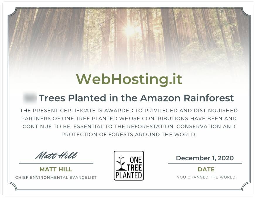 WebHosting.it e One Tree Planted DICEMBRE 2020