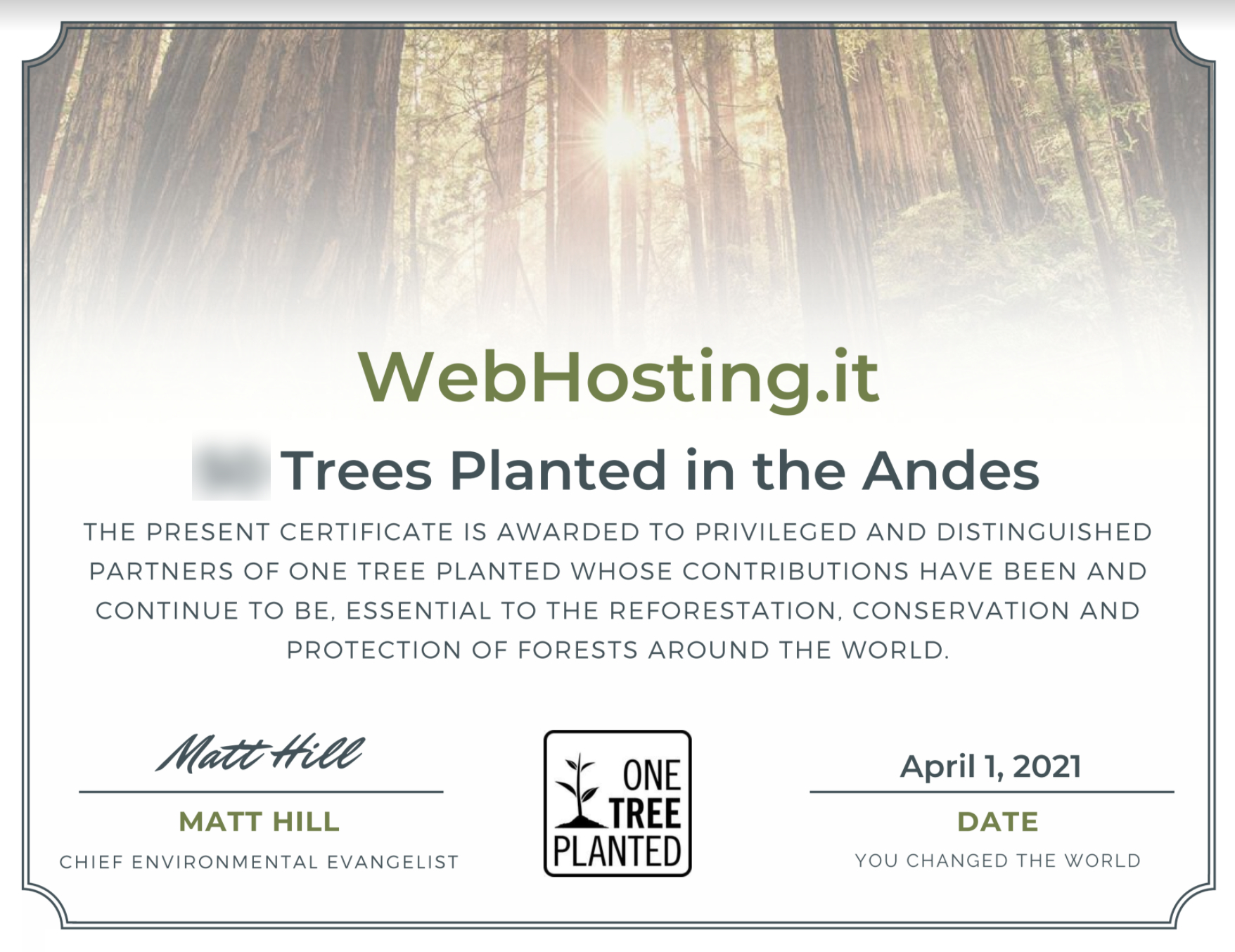 WebHosting.it e One Tree Planted APRILE 2021